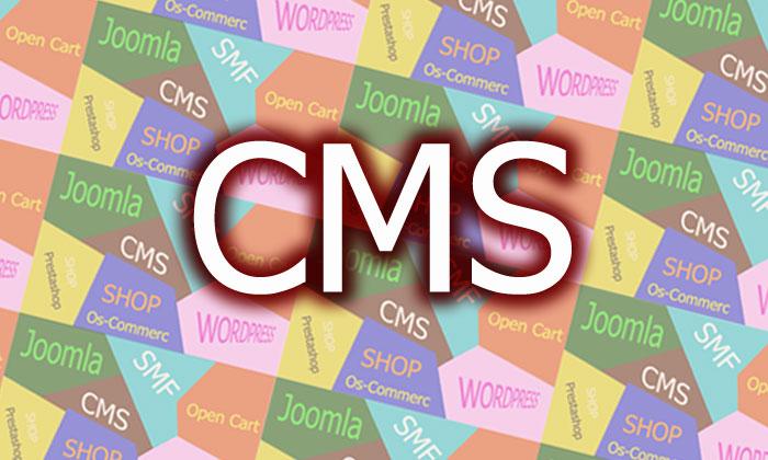 พัฒนาเว็บไซต์ด้วย-CMS