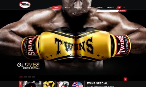 twinsspecial.com